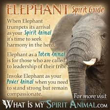 elephant symbolism meaning spirit totem power