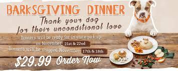 thanksgiving dinner for dogs barksgiving dinner for dogs the