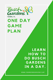 best 25 busch gardens tampa bay ideas on pinterest busch