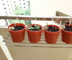 home diy gravity drip irrigation for herbs and plants 4 steps