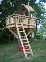 Real Treehouse Tree Fort Ladder Gate Roof Finale Kids Tree Forts Backyard