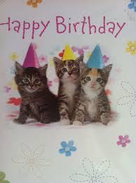 cute cats and kittens birthday tridanim
