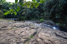 Gardeners Falls Maleny - chase this top 5 waterfalls on the sunshine coast