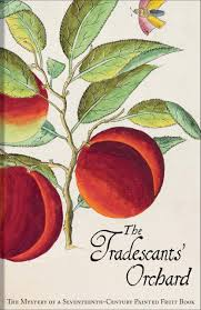 the tradescants u0027 orchard the mystery of a seventeenth century