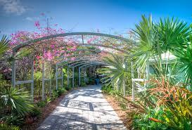 Naples Florida Botanical Garden File Naples Botanical Gardens Florida Panoramio 3 Jpg