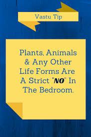 Home Design Plans As Per Vastu Shastra by Vastu Shastra Tip For Bedroom Never Allow Plants Or Animals In