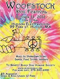 humane society black friday best 25 humane society ideas on pinterest the shelter pet