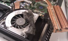 how to clean laptop fan myth or fact laptop intakes dust when on top of surface page 2
