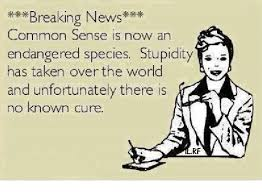 Common Sense Meme - breaking news common sense is now an endangered species stupidity