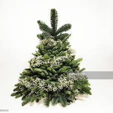 small christmas tree wrapped in babys breath stock photo getty
