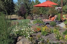 native plants landscaping our blog bend landscaping news bend landscaping contractor