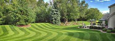 lawn care lawrenceville lawn services buford suwanee and duluth