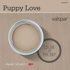 color of the day puppy love by valspar 31daysofcolor paint