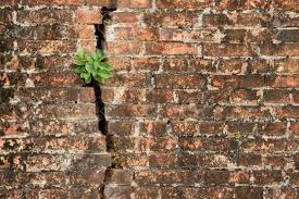 is exposed brick wall a good idea for 2016 quora