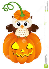 owl in halloween pumpkin stock vector image 44442102