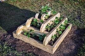 Strawberry Garden Beds How To Build A Strawberry Pyramid Bonnie Plants
