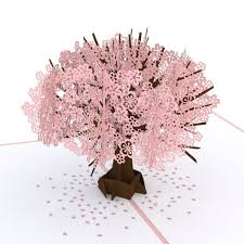 cherry blossom pop up s day card lovepop