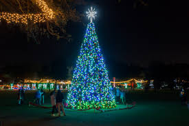 largo central park christmas lights how to photograph holiday lights with a dslr or your iphone in ta bay
