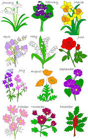 flower of the month birth flowers pictures august birth flower tattoos