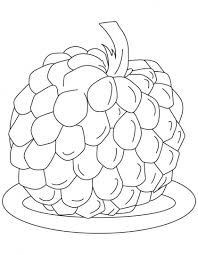 best 25 apple coloring pages ideas on pinterest apple coloring
