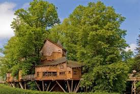 wooden lofted treehouse design