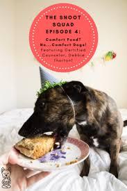 Comfort Pet Certification Podcast U2014 The Downward Dog