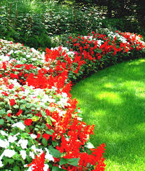 attractive landscape edging ideas outdoor garden landscaping image