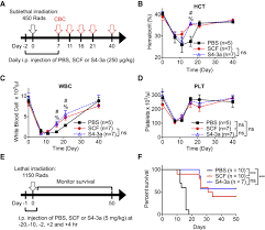 Scf Campus Map Decoupling The Functional Pleiotropy Of Stem Cell Factor By Tuning