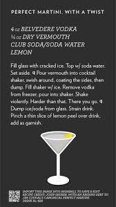 martini belvedere best 25 perfect martini ideas on pinterest olive martini recipe