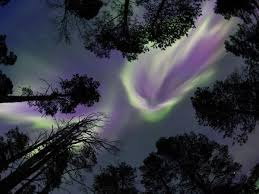vacation to see the northern lights northern lights watching vacations helping dreamers do