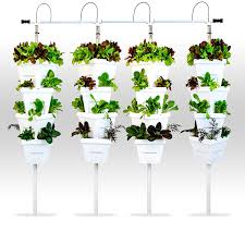 grow without soil hydroponics know more about hydroponics