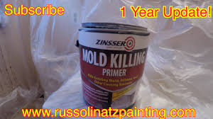 Bathroom Primer Painting Over White Mold Anti Paint Additive Mold Killing Primer
