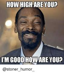 High Meme - 25 best memes about how high are you how high are you memes