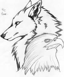 wolf and eagle drawing clipartxtras