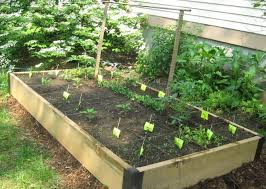 Garden With Trellis Contemporary Patio Easy And Simple Diy Square Foot Wood Raised Bed