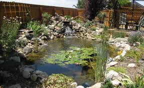 Backyard Nature Products Waterscapes Grand Junction Products U0026 Services