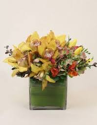 send flowers nyc 14 best winter flowers images on florists l wren