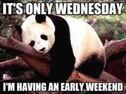 Wednesday Funny Meme - wednesday meme animals wednesday memes pinterest meme and