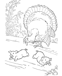 farm animal coloring pages printable turkey coloring page and