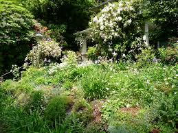Down To Earth Landscaping by Down To Earth Irrigation And Landscaping
