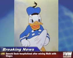 Meme Donald Duck - donald duck boner know your meme