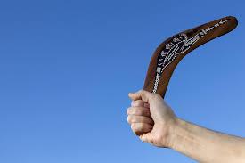 boomerang science abc