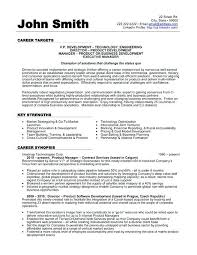 data scientist resume data scientist resume doc click here to this vice