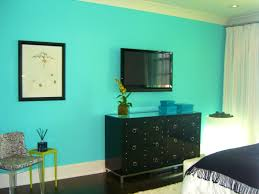 Dark Turquoise Living Room by What Colors Look Good With Turquoise Fancy White Wooden Partition