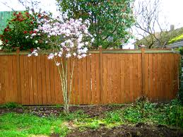 patio exciting backyard fence for your inspirations plywood