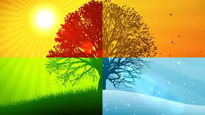 4 seasons composition animated background stock footage video