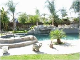 Tropical Landscape Ideas by Backyards Terrific Decorative Palm Trees For Tropical Landscape