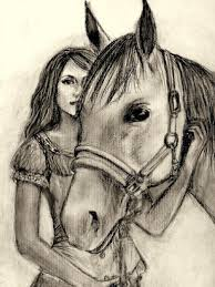 drawn horse pencil and in color drawn horse