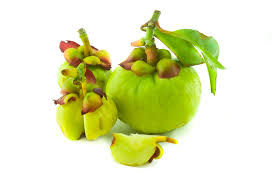 garcinia cambogia review update nov 2017 5 things you need to
