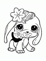littlest pet shop panda bear coloring pages image information